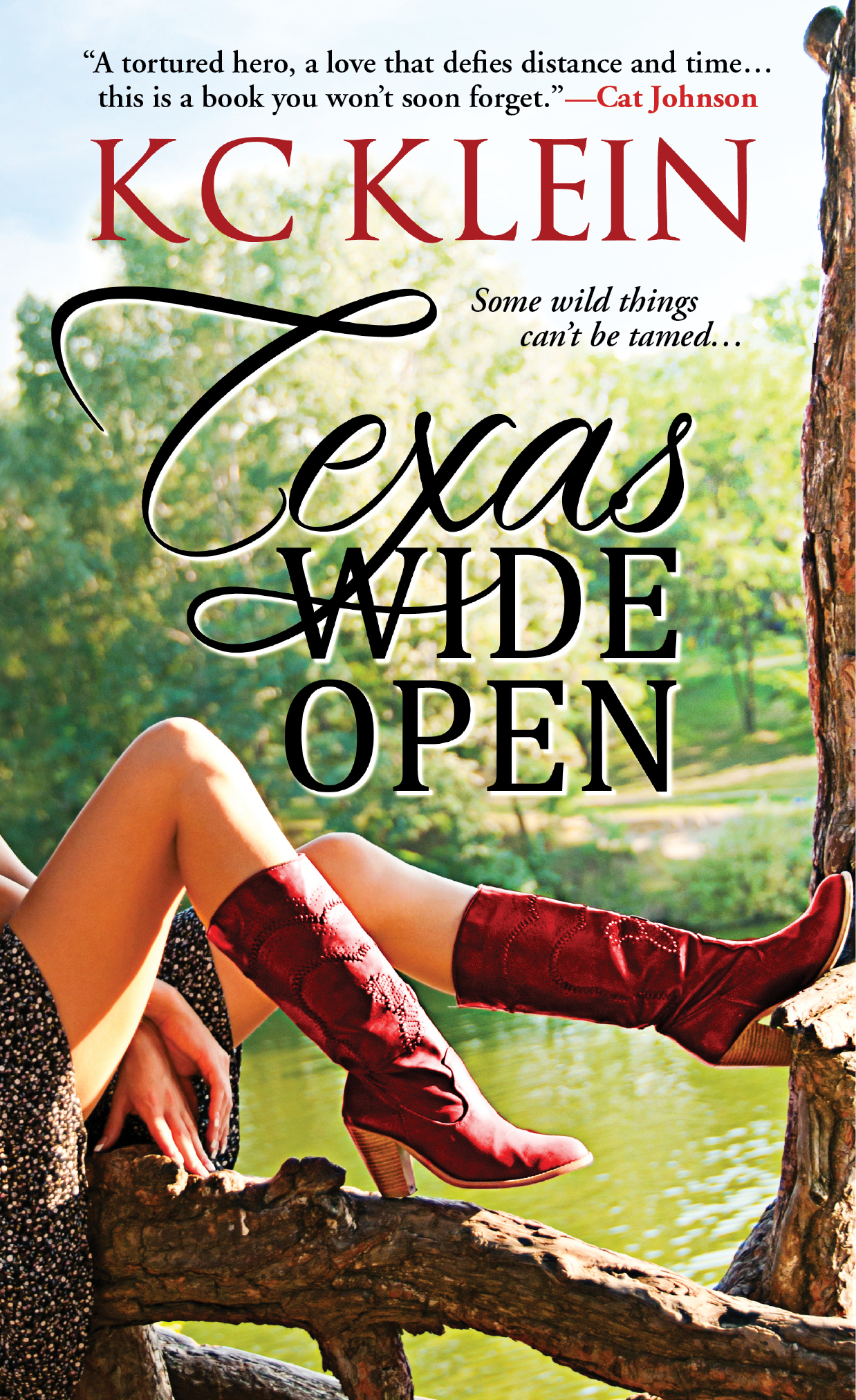 Romanaholics Review of Texas Wide Open